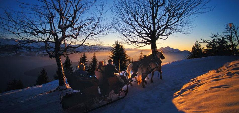GaST_Rigi_Winter_3.jpg