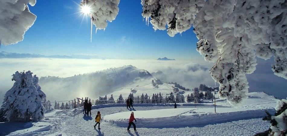 GaST_Rigi_Winter_4.jpg